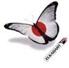 """Dart Flight """"Japan Butterfly"""" 100 Micron"""