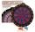 Dartboard Soft 2 Loch rot / blau mit 6 Dartpfeilen
