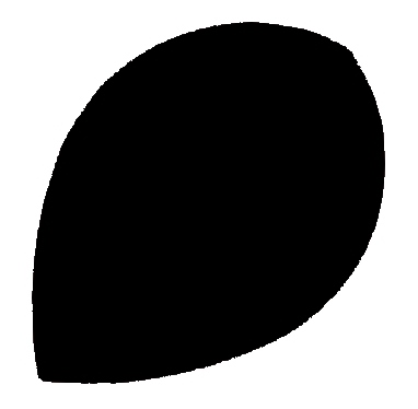 Pear schwarz